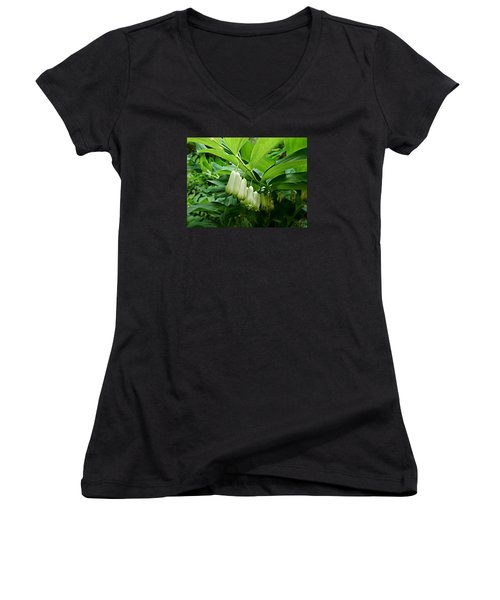 Wild Solomon's Seal Women's V-Neck T-Shirt (Junior Cut)