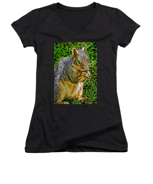Some Squirrels Are Big Women's V-Neck (Athletic Fit)