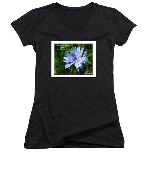 Song Of Solomon 4 Verse 7 Women's V-Neck T-Shirt