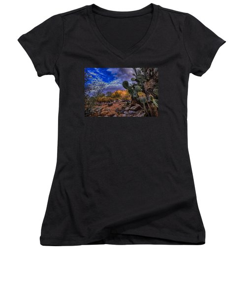 Women's V-Neck T-Shirt (Junior Cut) featuring the photograph Sonoran Desert 54 by Mark Myhaver