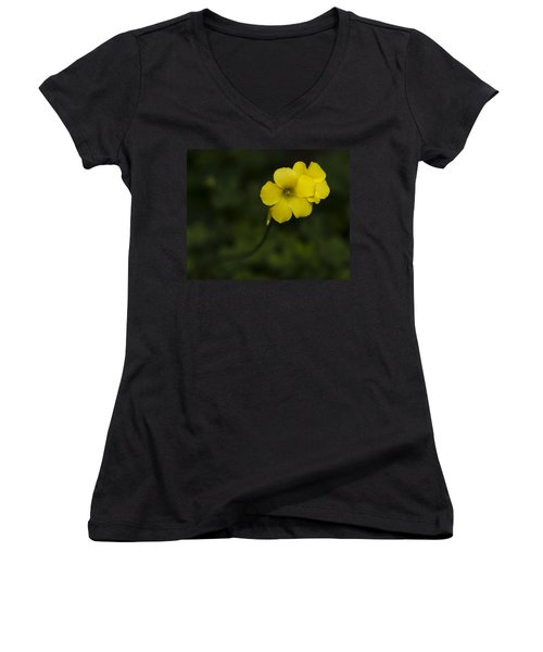 Sour Grass Women's V-Neck T-Shirt