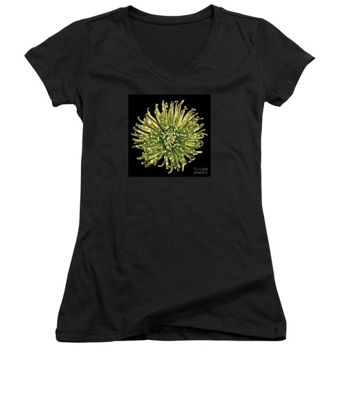 Women's V-Neck T-Shirt (Junior Cut) featuring the photograph Spider Mum by Jerry Fornarotto