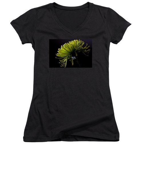 Women's V-Neck T-Shirt (Junior Cut) featuring the photograph Spike by Sennie Pierson