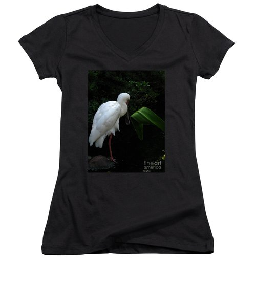 Spoonbill Morning Women's V-Neck T-Shirt (Junior Cut) by Greg Patzer