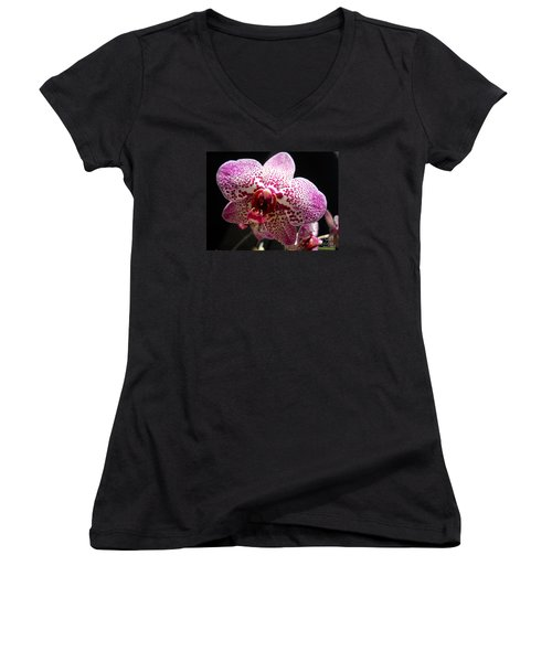 Women's V-Neck T-Shirt (Junior Cut) featuring the photograph Spotted Purple Orchid by Ramona Matei