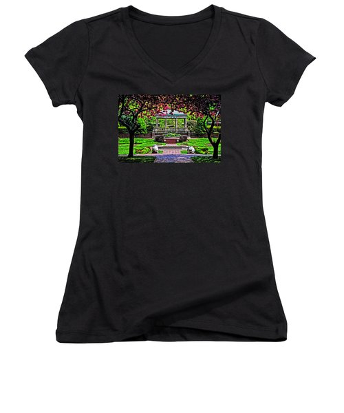 Spring At Lynch Park Women's V-Neck T-Shirt (Junior Cut) by Mike Martin