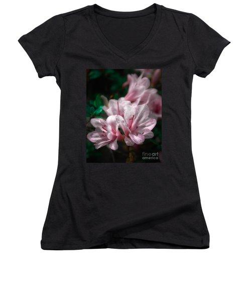 Spring Blossoms #2 Women's V-Neck