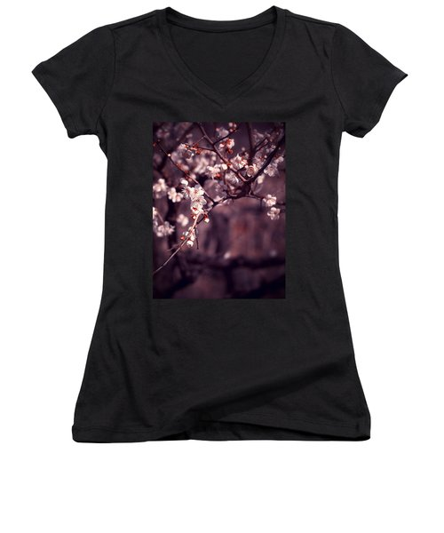 Spring Has Come Women's V-Neck T-Shirt