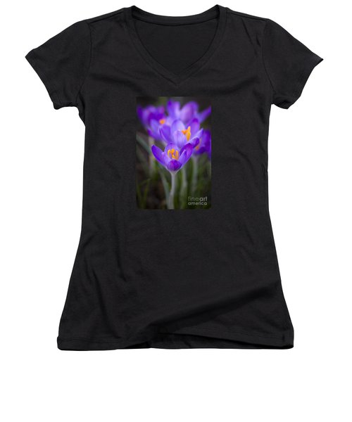 Spring Has Sprung Women's V-Neck T-Shirt (Junior Cut) by Clare Bambers