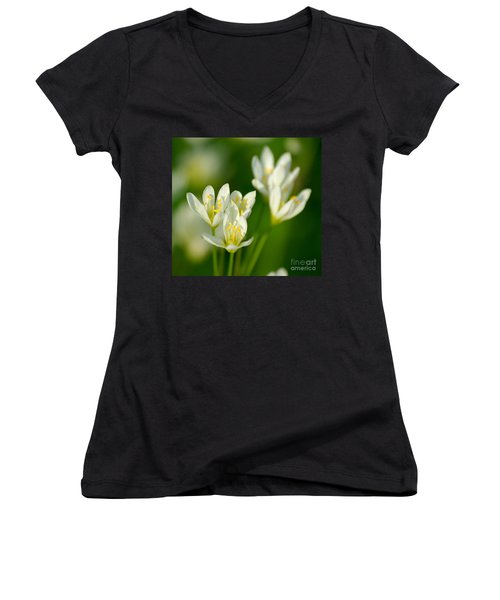 Spring In Miniature Women's V-Neck (Athletic Fit)