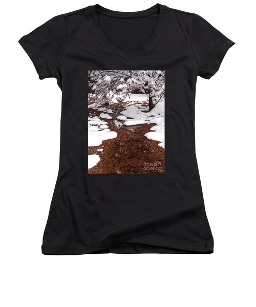 Women's V-Neck T-Shirt (Junior Cut) featuring the photograph Spring Into Winter by Kerri Mortenson