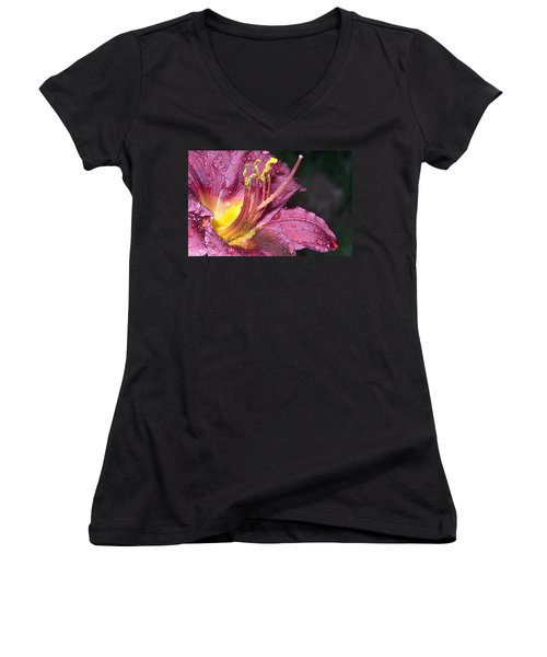 Spring Showers Women's V-Neck T-Shirt (Junior Cut)