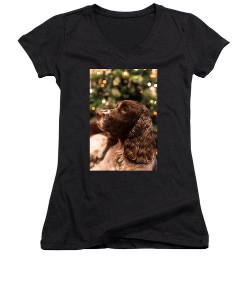 Springer Spaniel Women's V-Neck T-Shirt