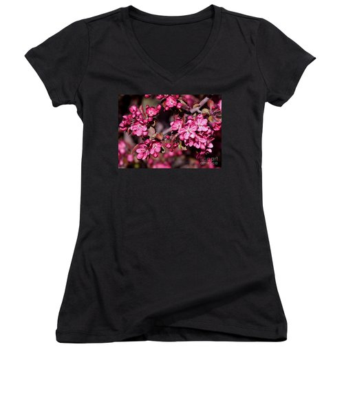 Women's V-Neck T-Shirt (Junior Cut) featuring the photograph Spring's Arrival by Roselynne Broussard