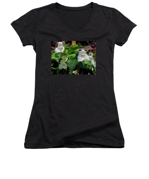 Springtime Trillium Women's V-Neck T-Shirt (Junior Cut) by David T Wilkinson