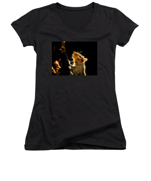 Squirrel Women's V-Neck T-Shirt