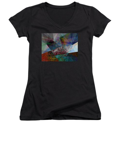 Stained Glass I Women's V-Neck T-Shirt