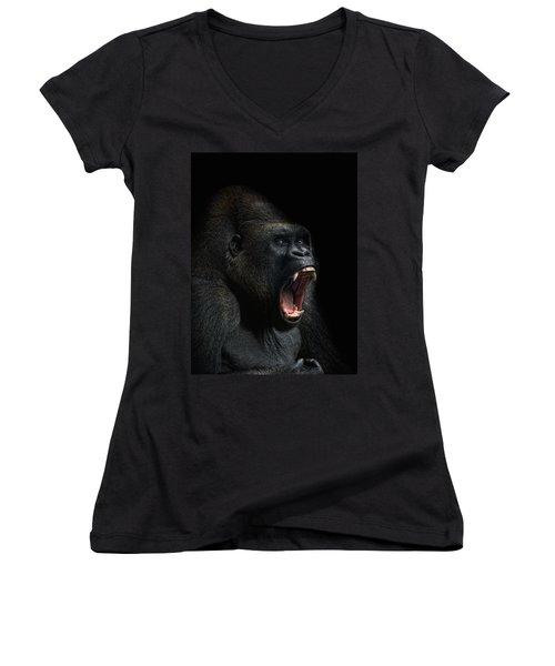 Stay Away Women's V-Neck T-Shirt (Junior Cut) by Joachim G Pinkawa