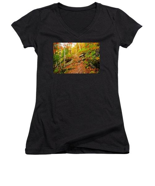 Stepping Stones Women's V-Neck T-Shirt (Junior Cut) by Bill Howard