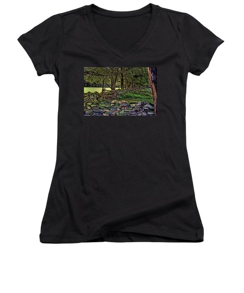 Stone Walled Women's V-Neck T-Shirt