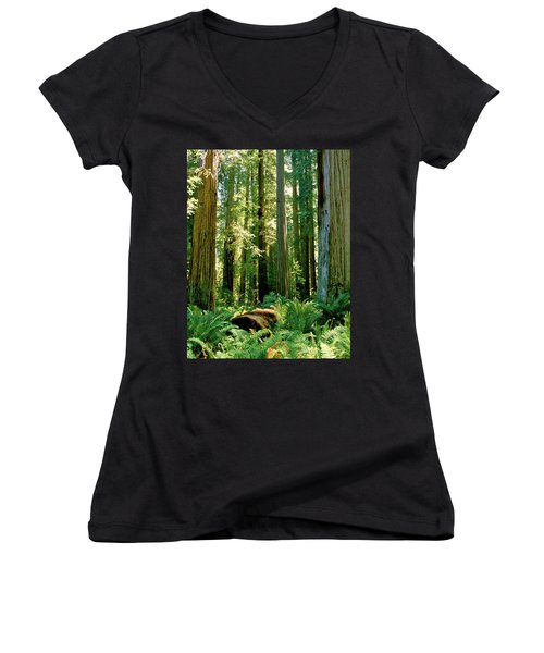 Stout Grove Coastal Redwoods Women's V-Neck T-Shirt (Junior Cut) by Ed  Riche