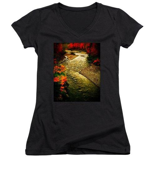 Stream Women's V-Neck T-Shirt (Junior Cut) by Bill Howard