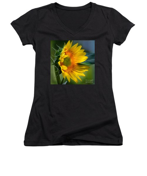 Summer Bonnet Women's V-Neck T-Shirt (Junior Cut) by Nava Thompson