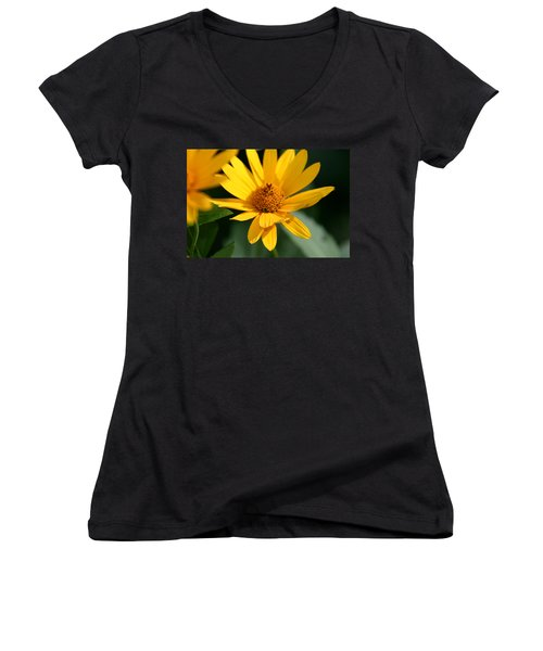 Women's V-Neck T-Shirt (Junior Cut) featuring the photograph Summer Dance by Denyse Duhaime