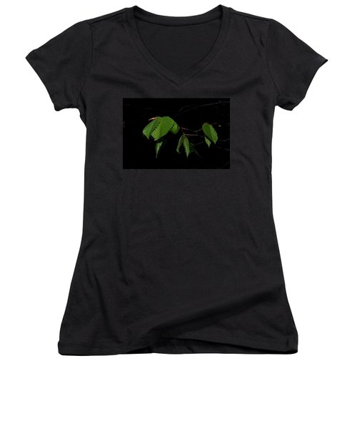 Summer Leaves On Black Women's V-Neck (Athletic Fit)