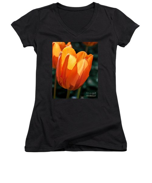 Women's V-Neck T-Shirt (Junior Cut) featuring the photograph Sun Kissed Tulip by Barbara McMahon