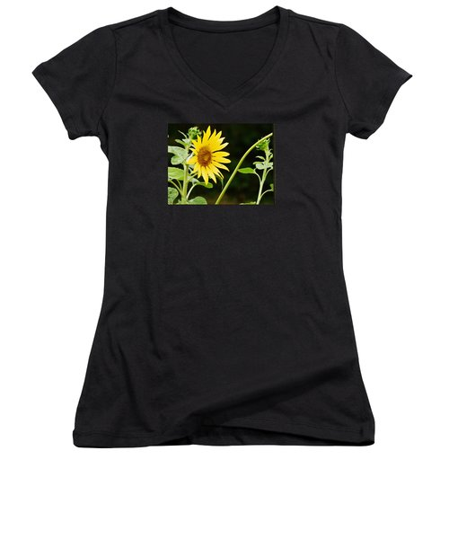 Sunflower Cheer Women's V-Neck T-Shirt (Junior Cut) by VLee Watson