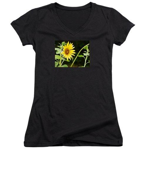 Sunflower Cheer Women's V-Neck (Athletic Fit)