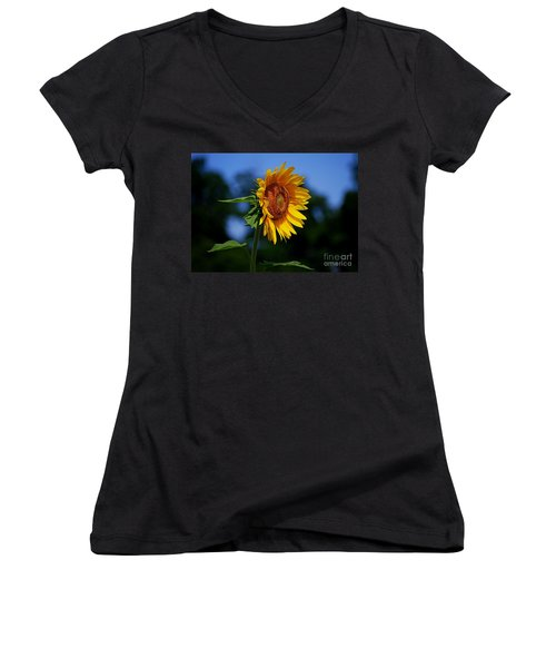 Sunflower With Honeybee Women's V-Neck T-Shirt (Junior Cut) by Catherine Sherman