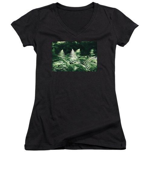 Women's V-Neck T-Shirt (Junior Cut) featuring the photograph Sunlight And Shadows-algonquin Ferns by David Porteus