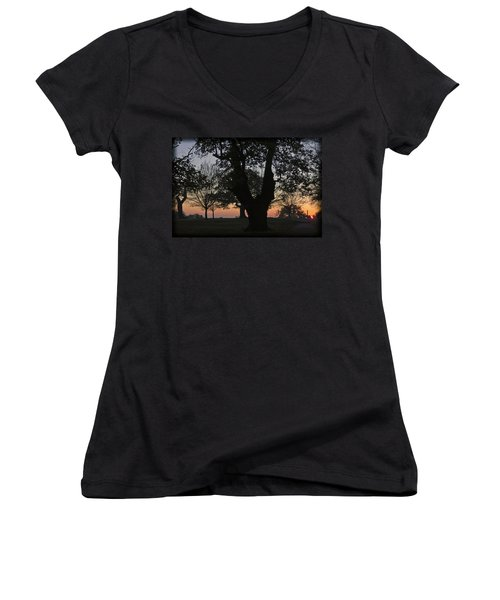 Sunset In Richmond Park Women's V-Neck (Athletic Fit)