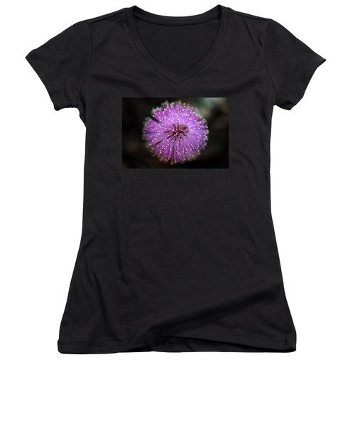 Women's V-Neck T-Shirt (Junior Cut) featuring the photograph Sunshine Mimosa by Greg Allore