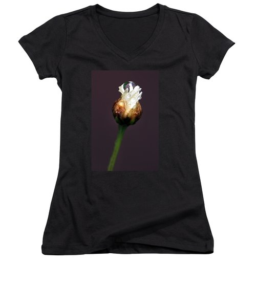 Women's V-Neck T-Shirt (Junior Cut) featuring the photograph Synergy I by Marion Cullen