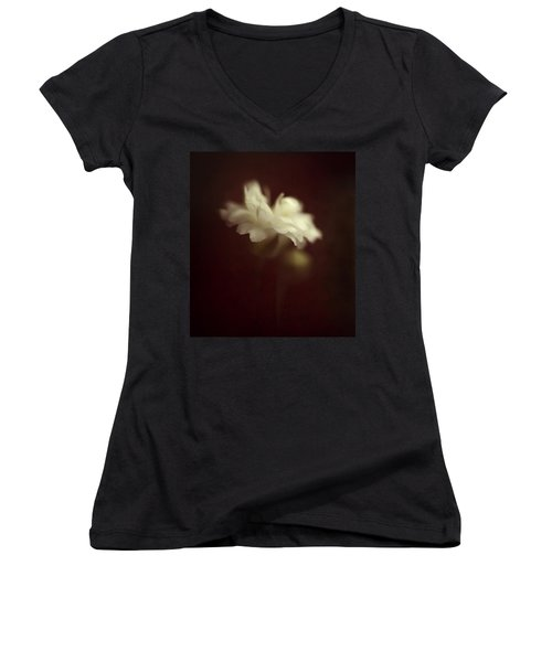 Take Me To The Secret Place Where All Your Dreams Come True Women's V-Neck