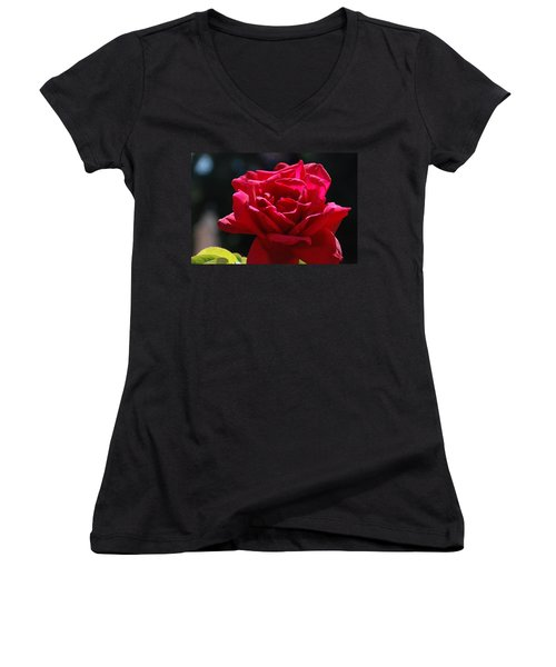 That Which We Call A Rose Women's V-Neck T-Shirt (Junior Cut) by Eric Tressler