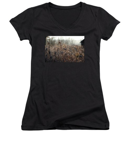 The Brown Side Of Winter Women's V-Neck (Athletic Fit)
