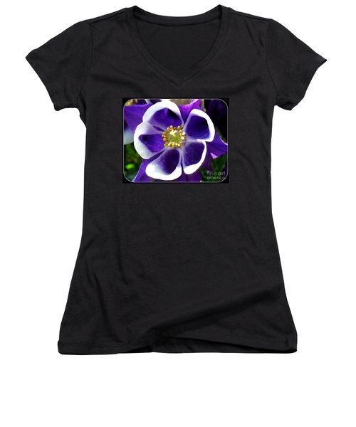 The Columbine Flower Women's V-Neck T-Shirt (Junior Cut) by Patti Whitten