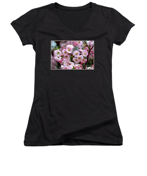 The Delicate Cherry Blossoms Women's V-Neck T-Shirt (Junior Cut) by Patti Whitten