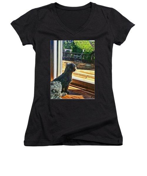 The Fluffy Watcher Women's V-Neck T-Shirt