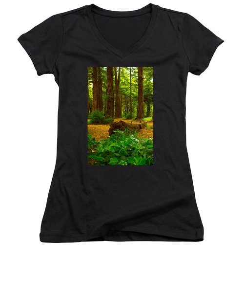 The Forest Of Golden Gate Park Women's V-Neck