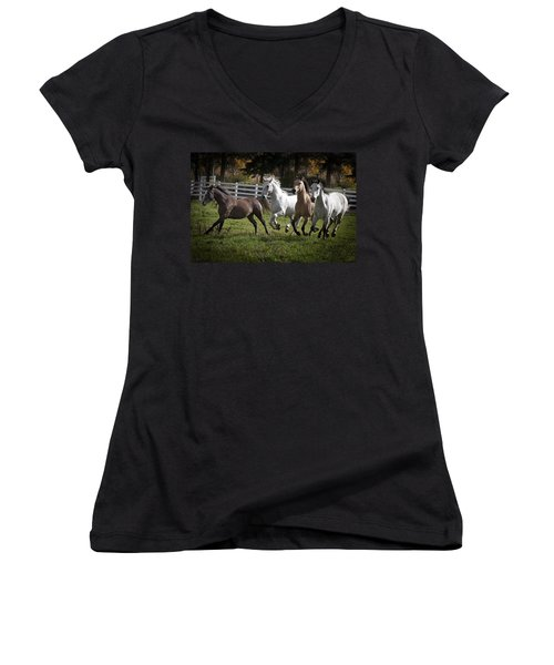 The Goldendale Four Women's V-Neck T-Shirt (Junior Cut) by Wes and Dotty Weber