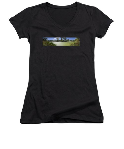 The Indiana Wetlands Women's V-Neck T-Shirt (Junior Cut) by Verana Stark