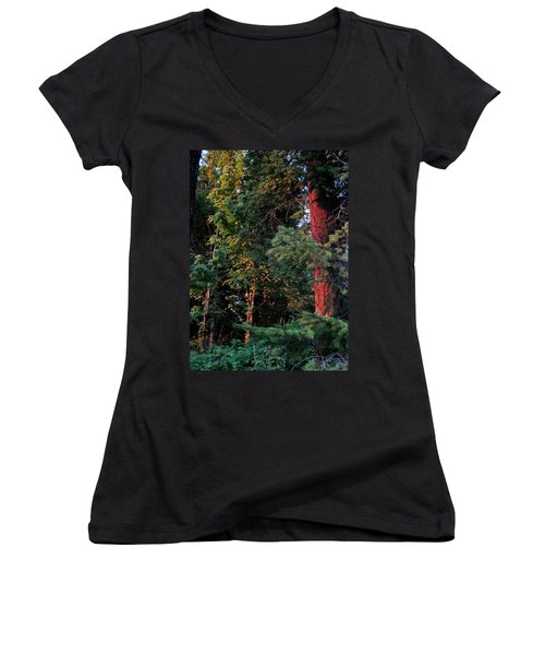 Women's V-Neck T-Shirt (Junior Cut) featuring the photograph The Magic Hour by Natalie Ortiz