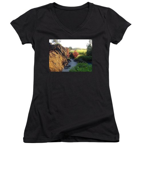 Women's V-Neck T-Shirt (Junior Cut) featuring the photograph The Path by Shawn Marlow