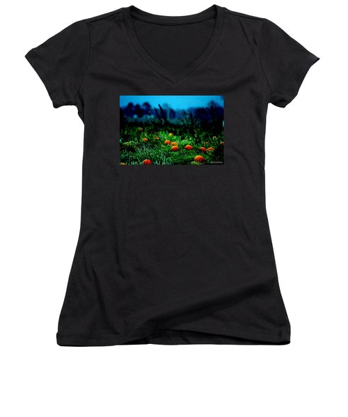 Women's V-Neck T-Shirt (Junior Cut) featuring the photograph The Pumpkin Patch by Lesa Fine