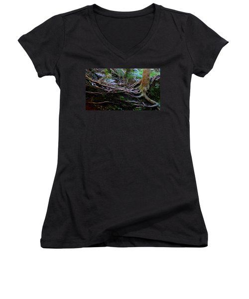 Women's V-Neck T-Shirt (Junior Cut) featuring the photograph The Salamander Tree by Evelyn Tambour